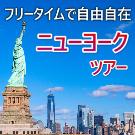 フリープランで自由自在 ニューヨークツアー