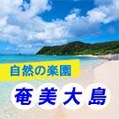 自然の楽園 奄美大島